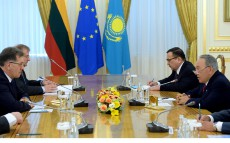 Meeting with Prime Minister of Lithuania Algirdas Butkevicius
